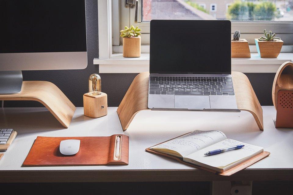 desk laptop plant