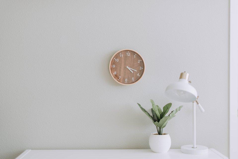 clock plant